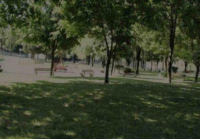Basauri protegerá sus zonas verdes con una nueva ordenanza
